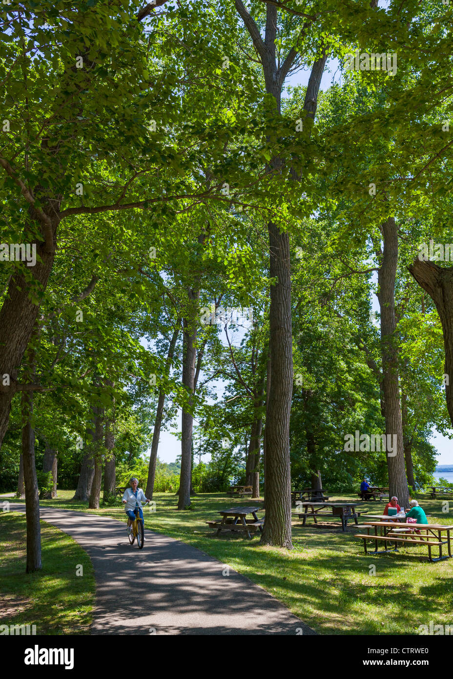 Path through the woods and picnic area in Presque Isle State Park, Lake Erie, Pennsylvania, USA - Stock Image