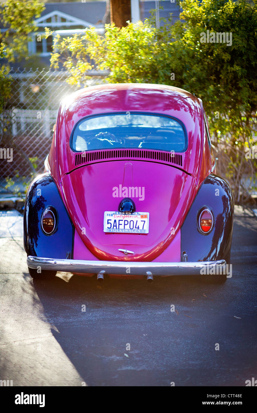 VW Beetle with Californian license plate - Stock Image