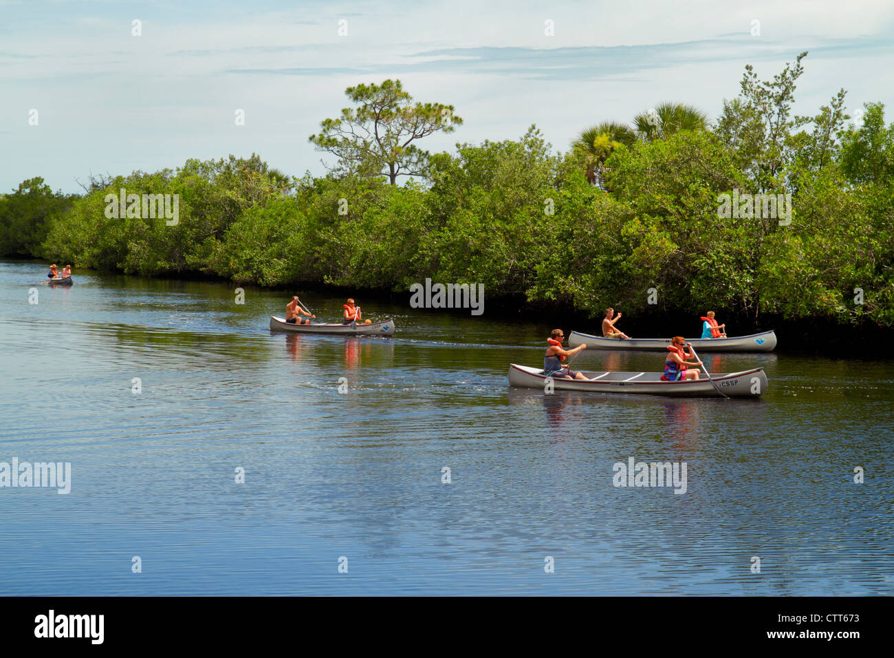 Naples Florida Tamiami Trail Collier-Seminole State Park Everglades Trail Nature Site Blackwater River mangroves - Stock Image