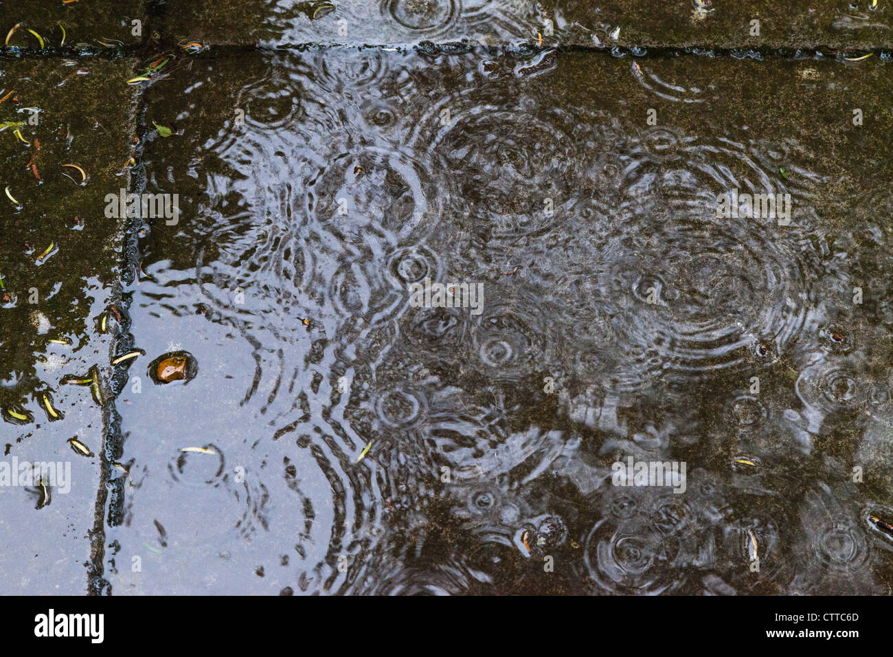 Heavy raindrops falling on paving stones in garden, causing ripples in June garden UK. - Stock Image