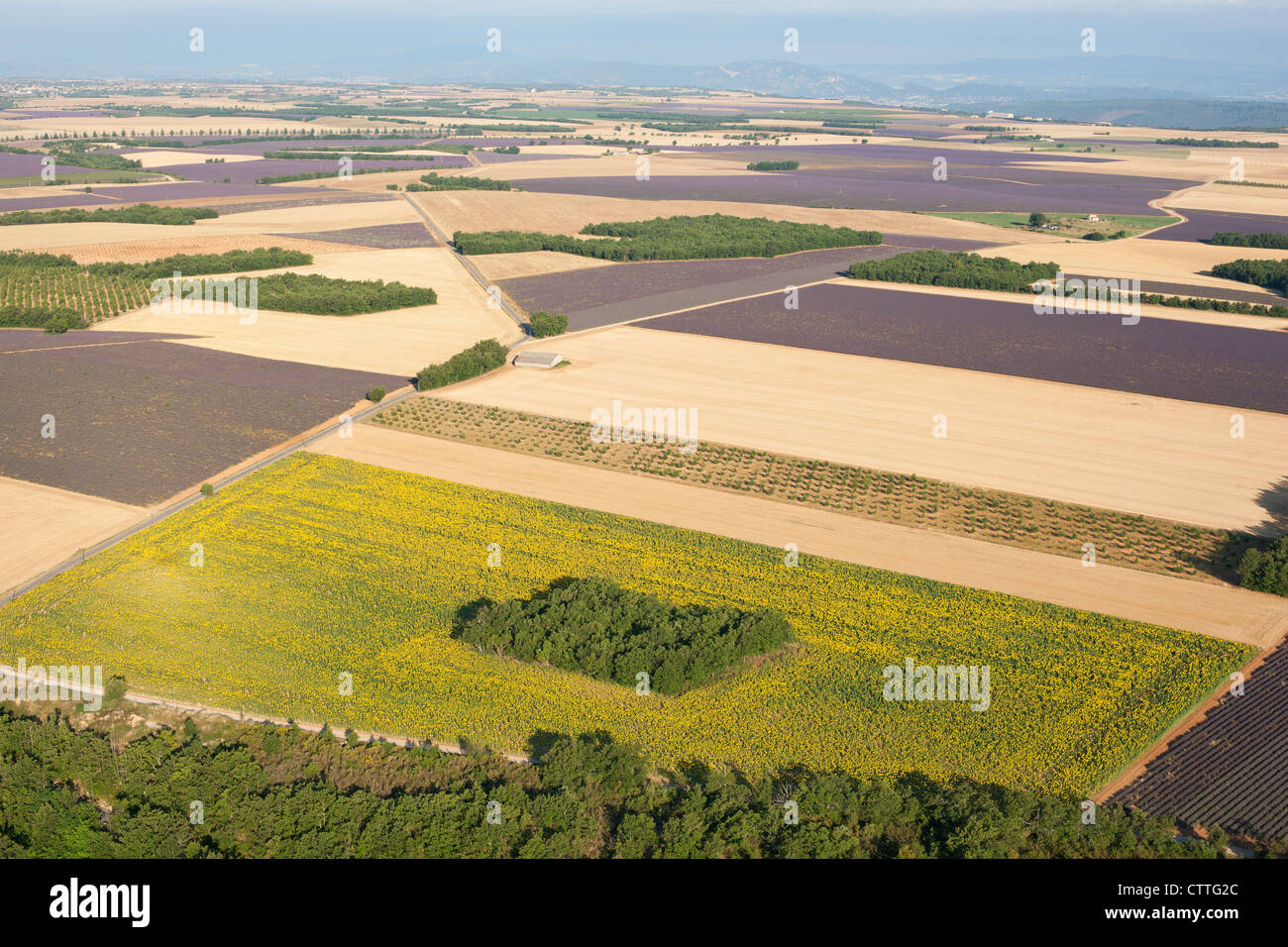 VALENSOLE PLATEAU (aerial view). Lavender, wheat and sunflower fields. Puimoisson, provence. France. Stock Photo