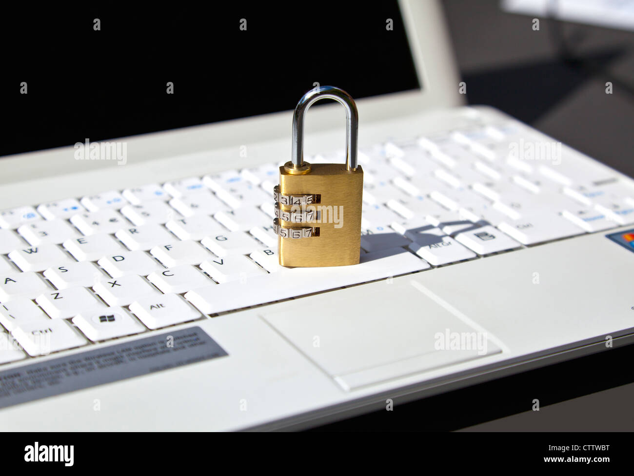 Online security - Stock Image