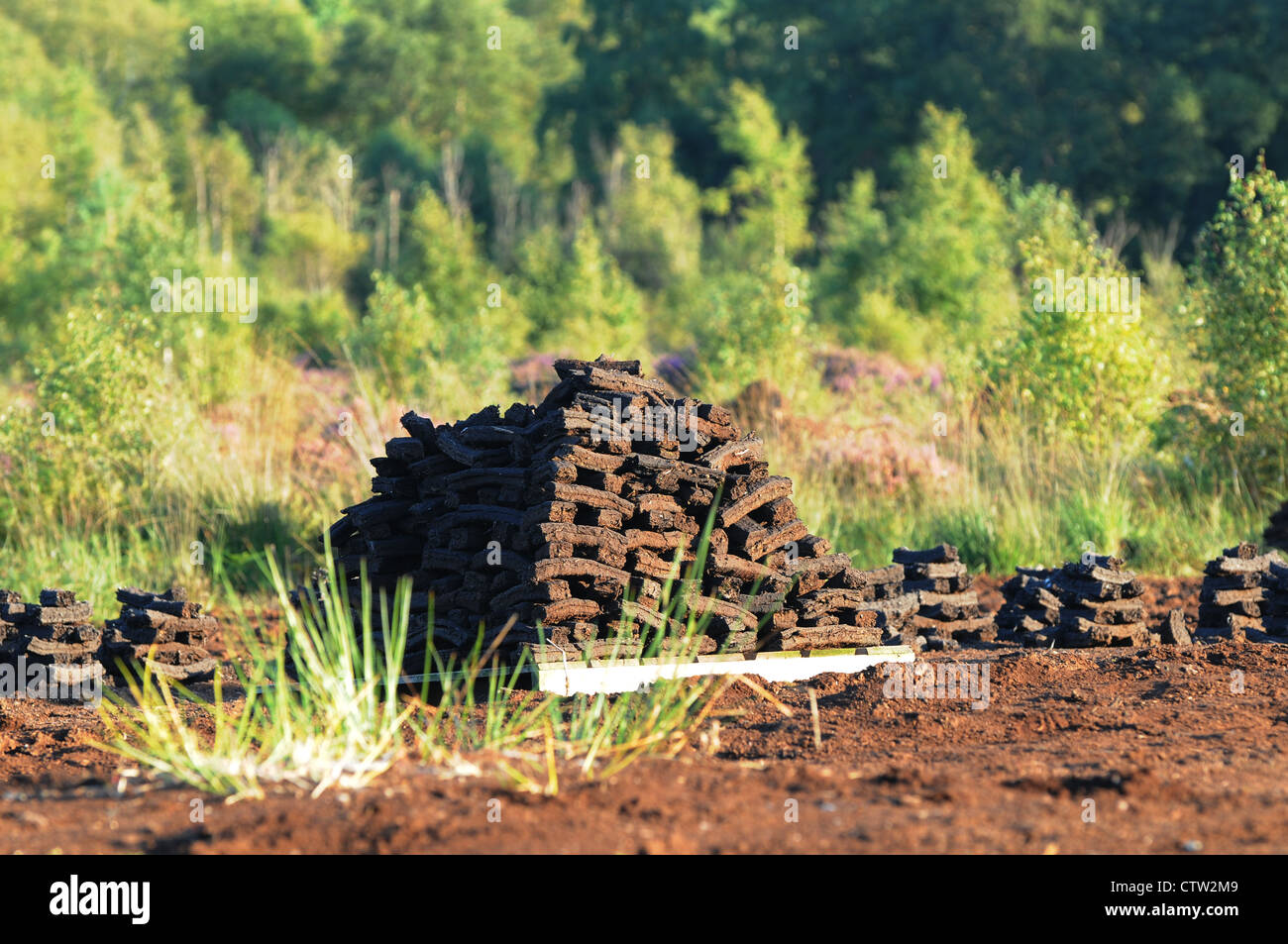 Sods of turf stacked to dry on, Emlagh Bog, Oristown, Kells, County Meath, Ireland - Stock Image