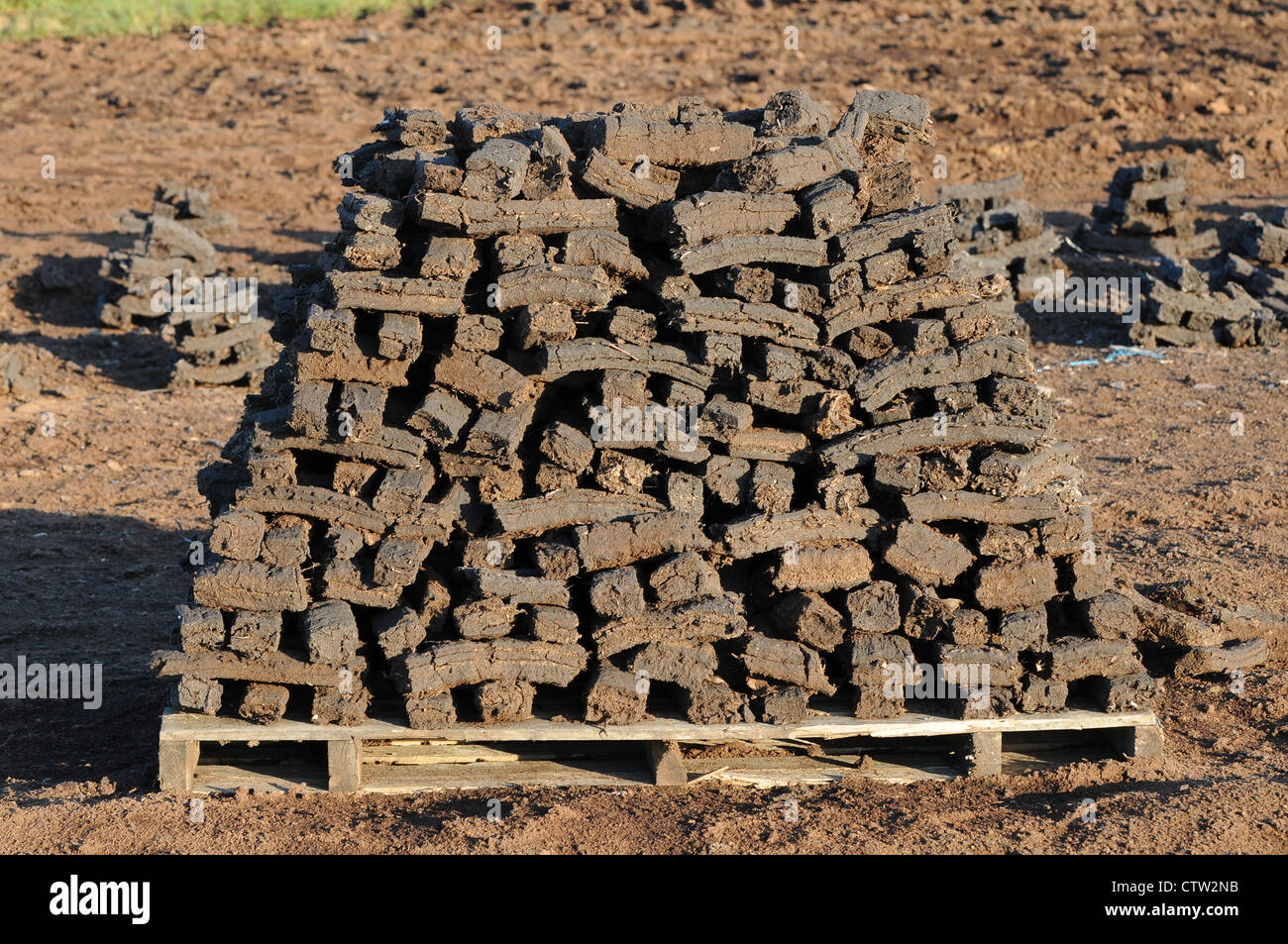 Sods of turf stacked to dry on a wooden pallet on, Emlagh Bog, Oristown, Kells, County Meath, Ireland - Stock Image
