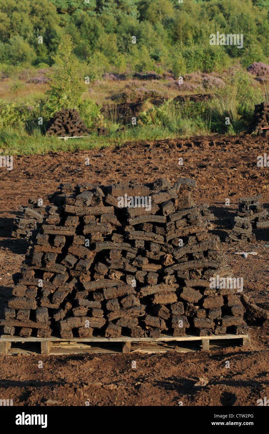 Sods of turf stacked to dry on a wooden pallet , Emlagh Bog, Oristown, Kells, County Meath, Ireland Stock Photo