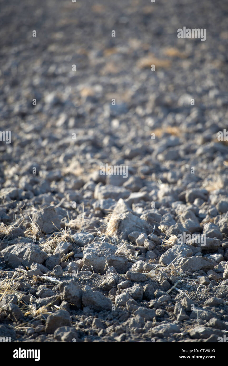 Dry, shallow turned field during severe drought in Kansas, USA. Stock Photo