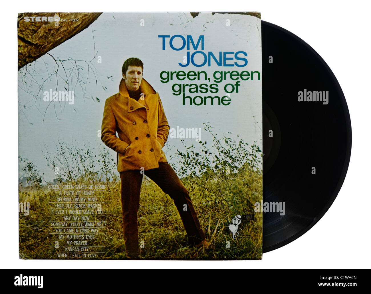 Green Green Grass of Home by Tom Jones - Stock Image
