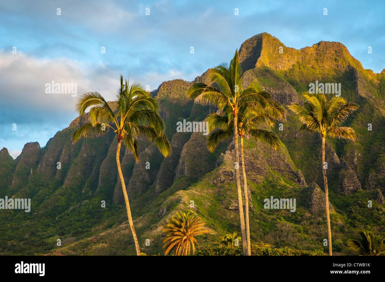 The spectacular ridges of Mo'o Kapu O Haloa, Kualoa, Oahu, Hawaii - Stock Image
