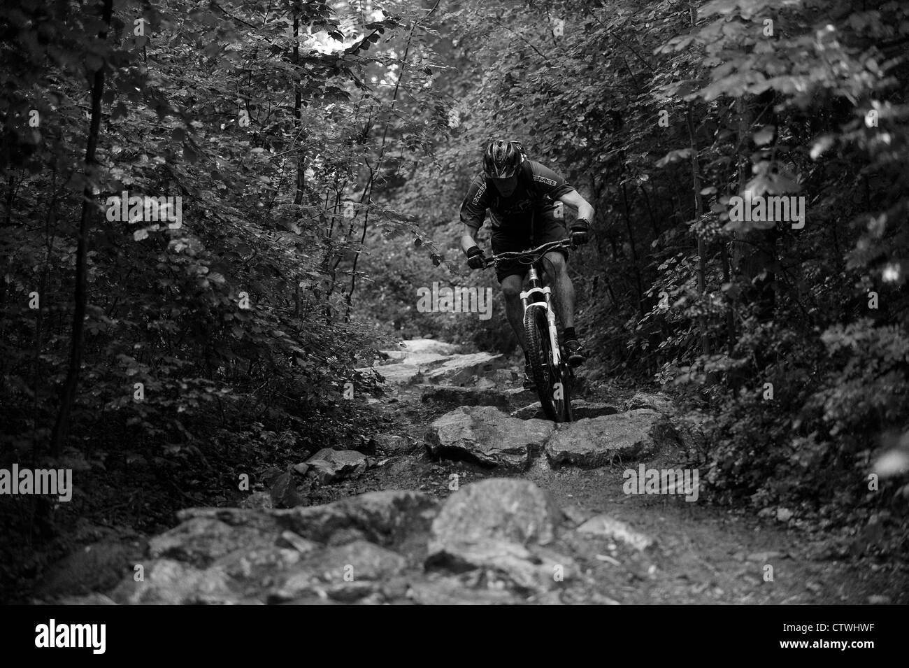 A mountain biker rides a rocky trail at Ashton Court in Bristol. - Stock Image