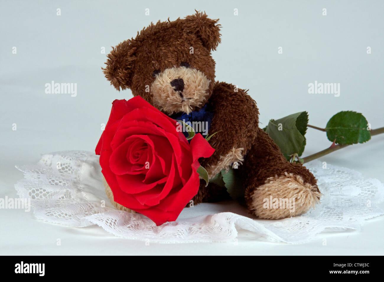Teddy bear red rose stock photos teddy bear red rose stock images cute teddy bear on beautiful red rose stock image izmirmasajfo