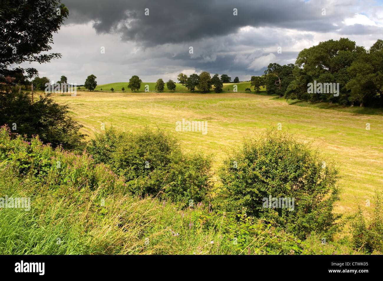 Looking North towards Nantwich from the banks of the Shropshire Union canal near Audlem. - Stock Image