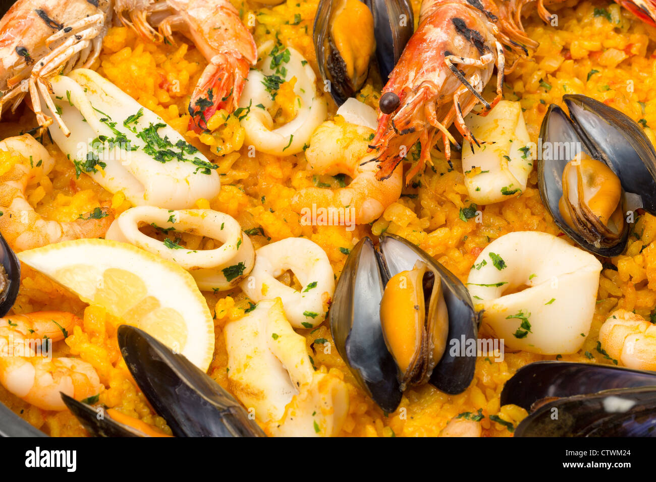 Close-up of a Seafood paella - studio shot with a shallow depth of field - Stock Image