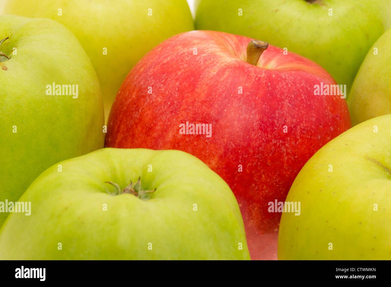 A single red apple standing out amongst a group of green apples - studio shot with a shallow depth of field - Stock Image