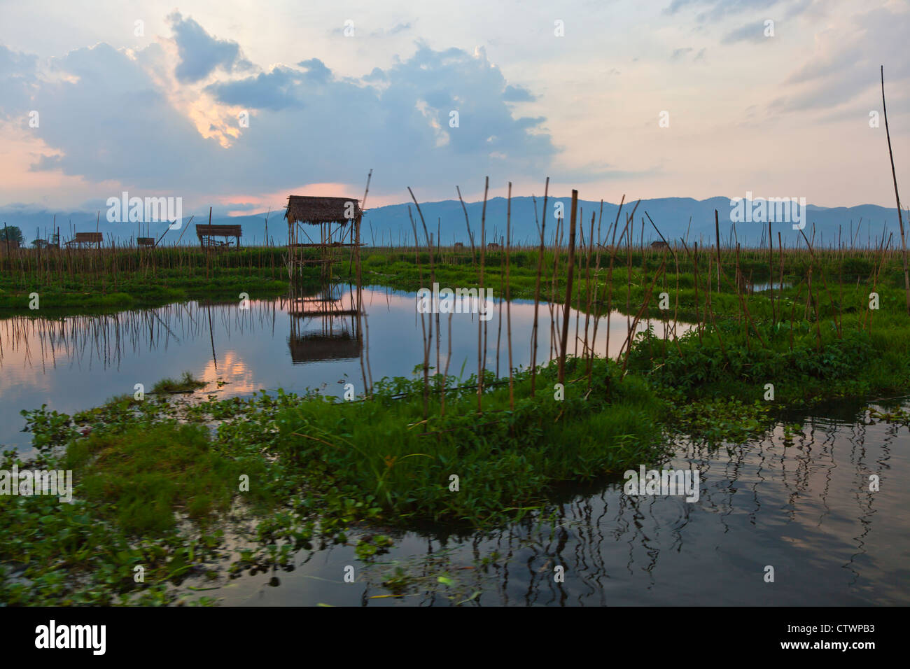 AGRICULTURAL HUTS surrounding INLE LAKE - MYANMAR Stock Photo