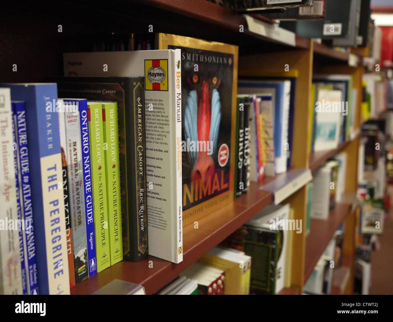 Bookshelf Book Books Stack Organize