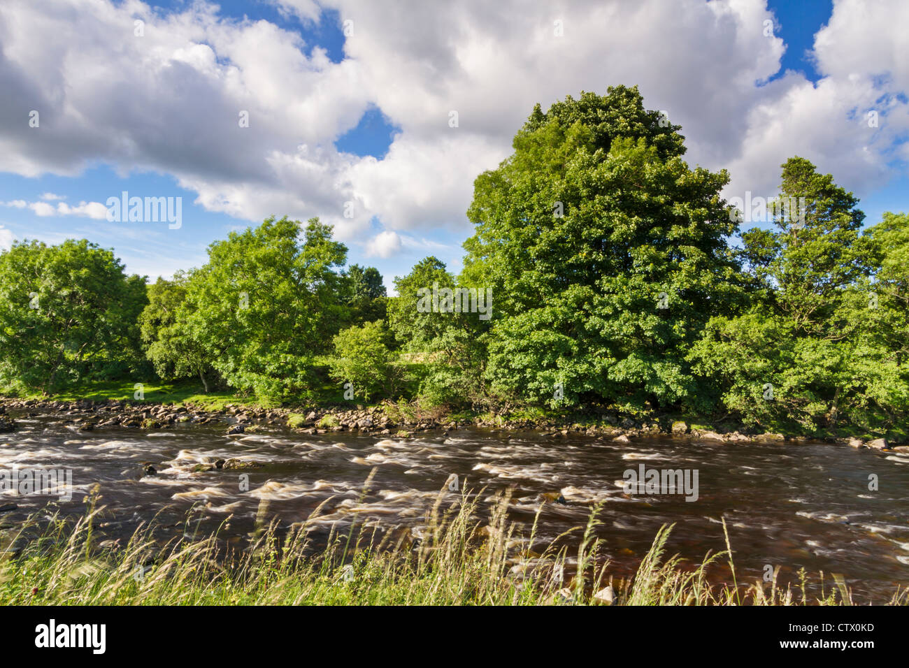 The River Tees from the Pennine Way in the North Pennines Area of Outstanding Natural Beauty, Teesdale, County Durham, - Stock Image