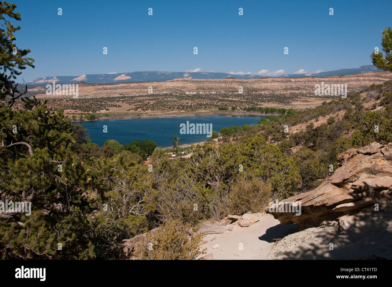 USA Utah,  view at Escalante in Petrified Forest state park. Stock Photo
