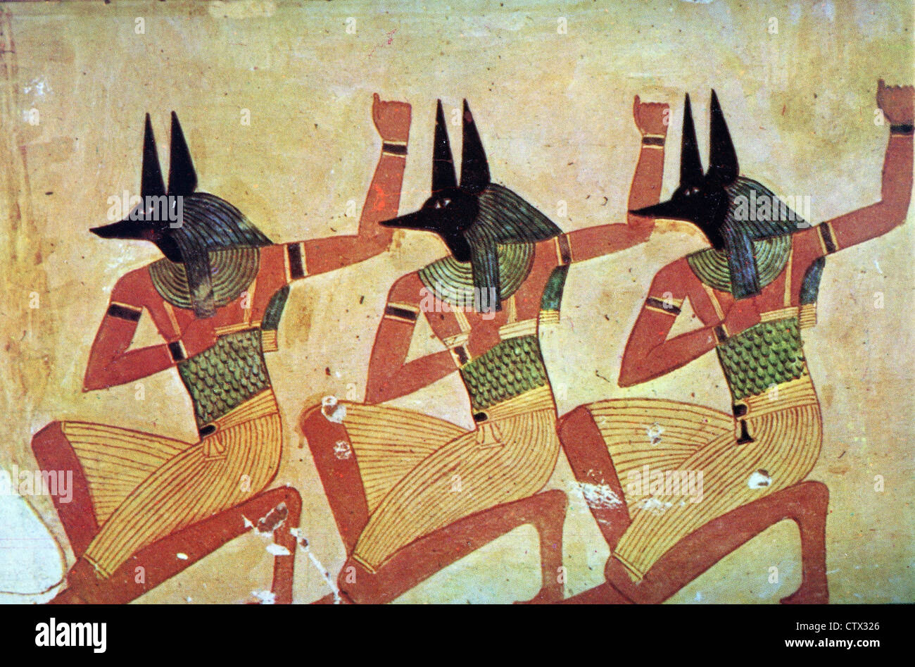 Art of of Anubis, the God with the jackal head in the tomb of Anherkhaou - Stock Image