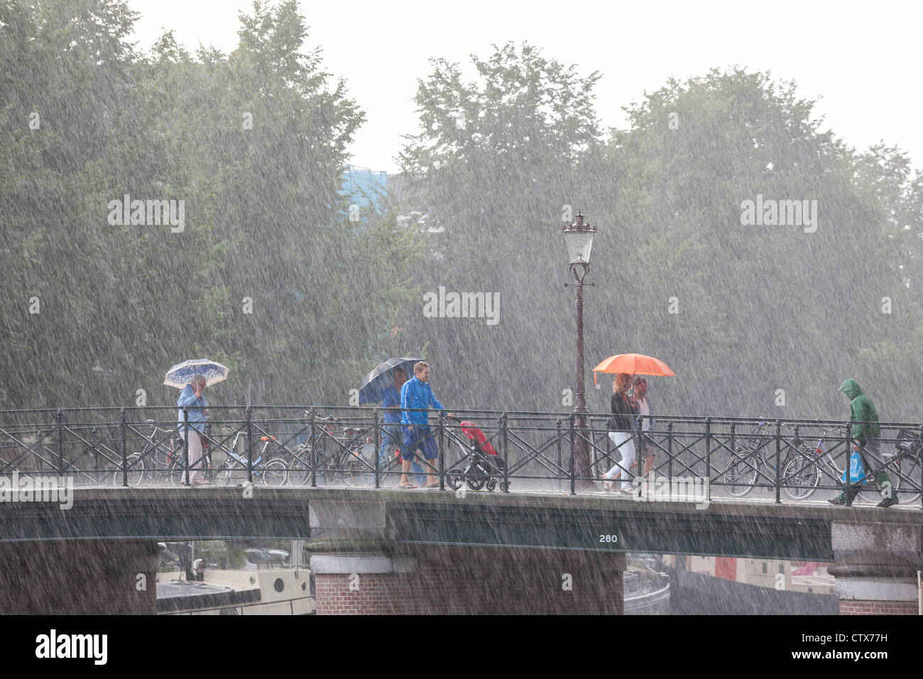 Amsterdam bridge. Sudden torrential summer rain. People on a bridge with umbrellas. One local in rain gear with - Stock Image