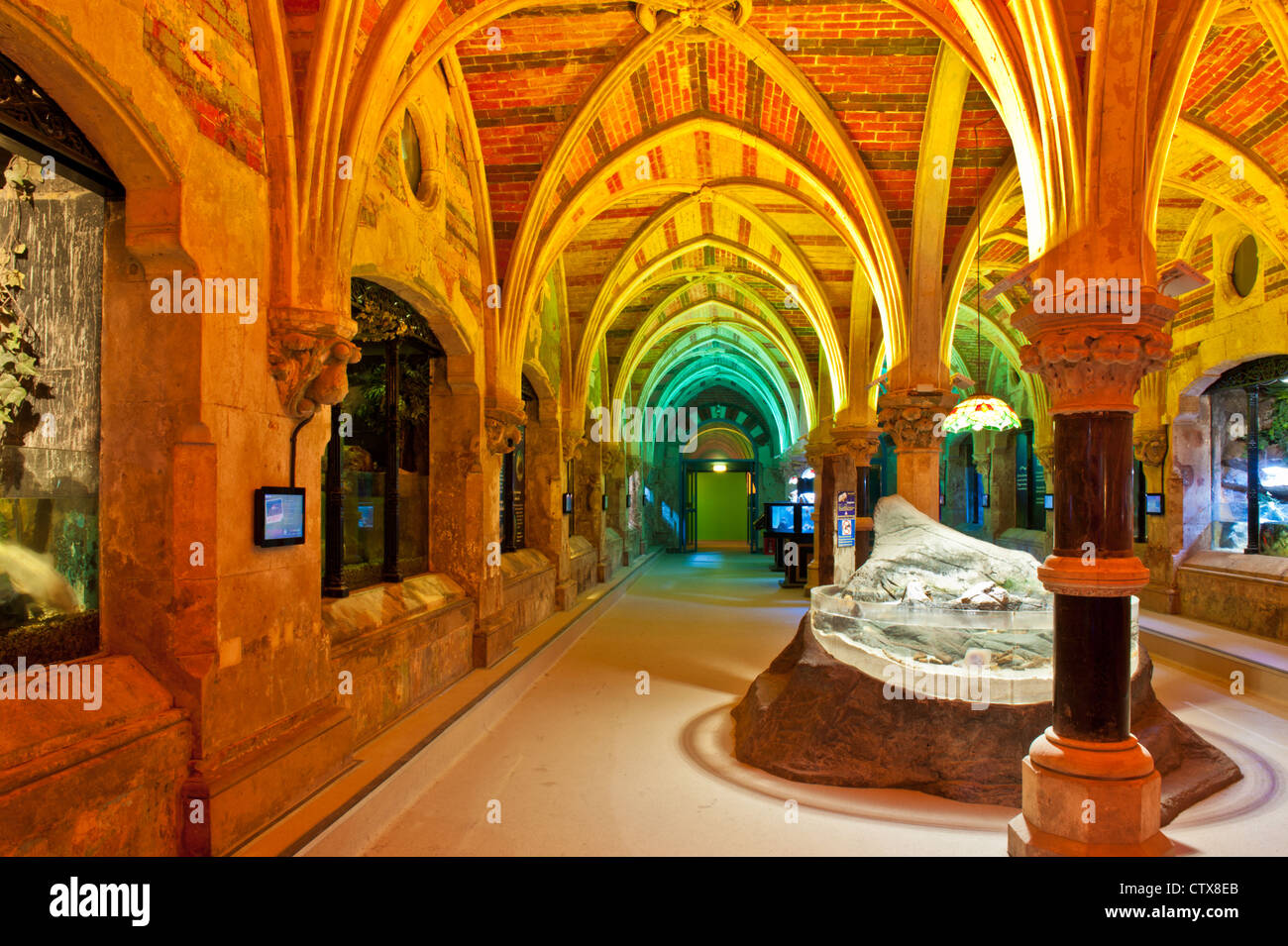The recently refurbished Sea Life Centre, Brighton, East Sussex, UK showing the magnificent brick work vaulted ceiling - Stock Image