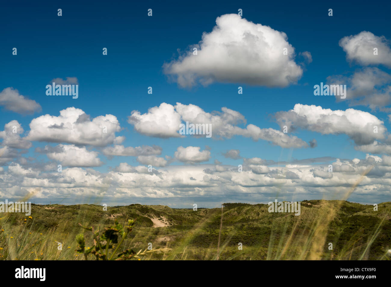 Wolkenhimmel mit Wiese, sky with clouds over meadow - Stock Image