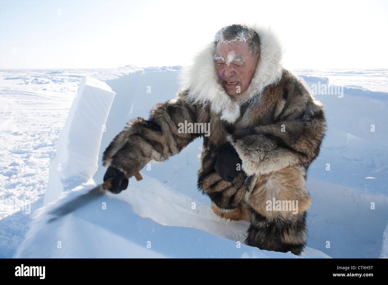 building an iglo on the north pole Stock Photo