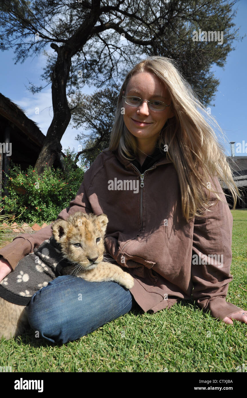 lion conservation in Africa - Stock Image