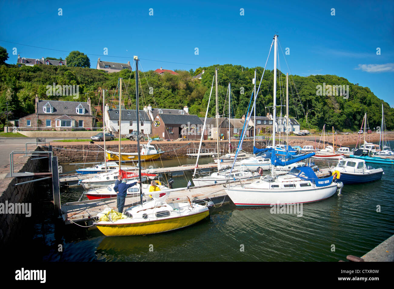 Avoch harbour on the Moray Firth offers dolphin watching boat trips.  SCO 8274 - Stock Image