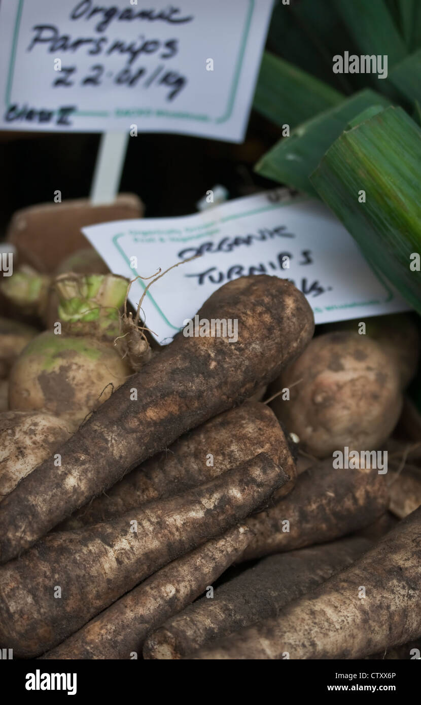 Organically grown, outdoor display of local vegetables including freshly harvested organic Parsnips and Turnips, Stock Photo
