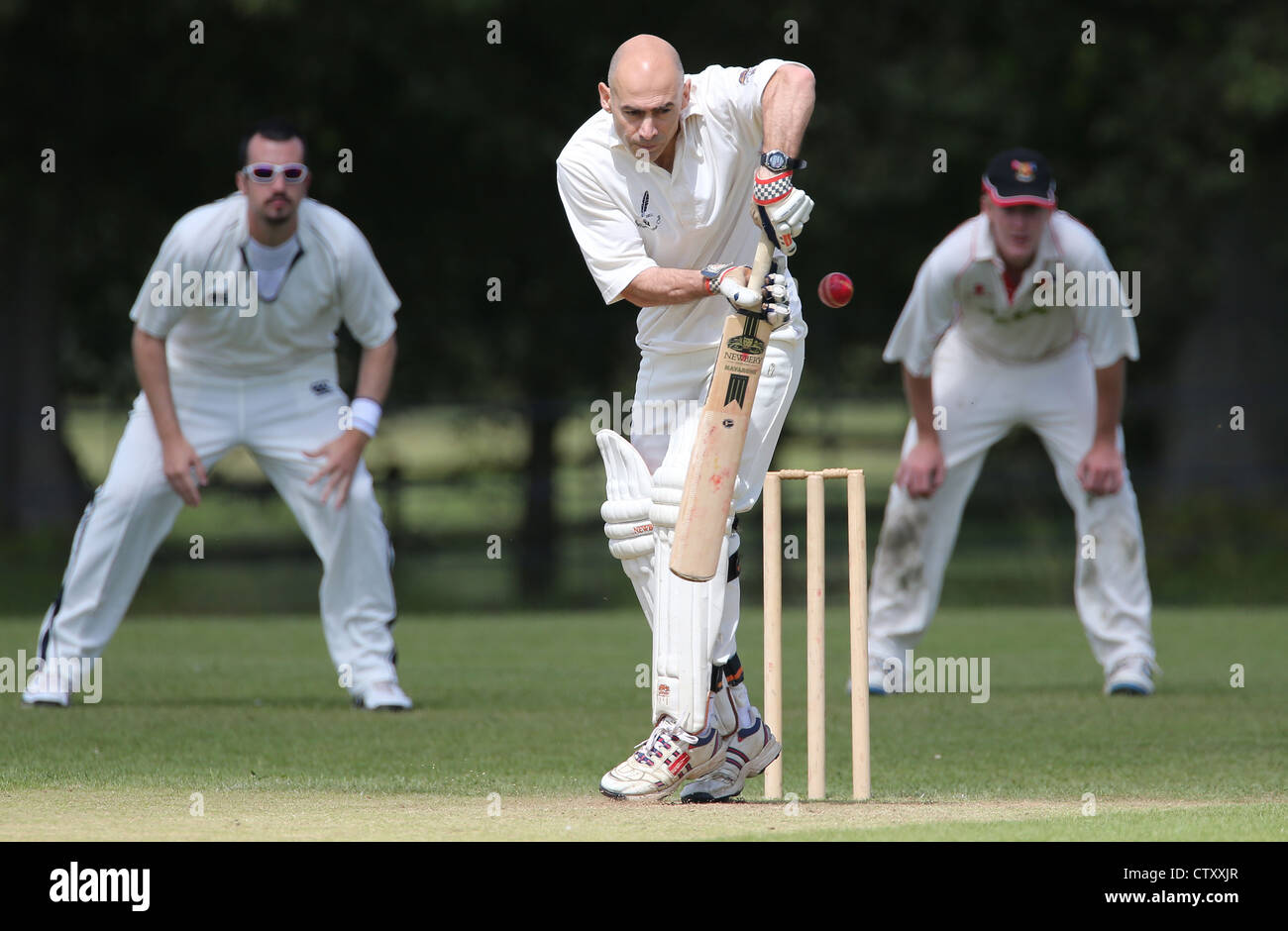 A Batsman in action during a village cricket match in the English Countyside. Picture by James Boardman. - Stock Image