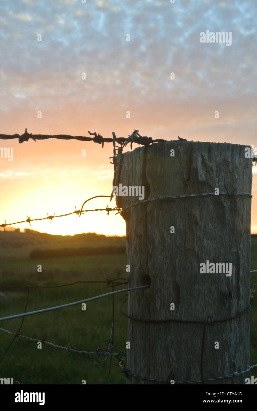 Barbwire fence post sunset - Stock Image