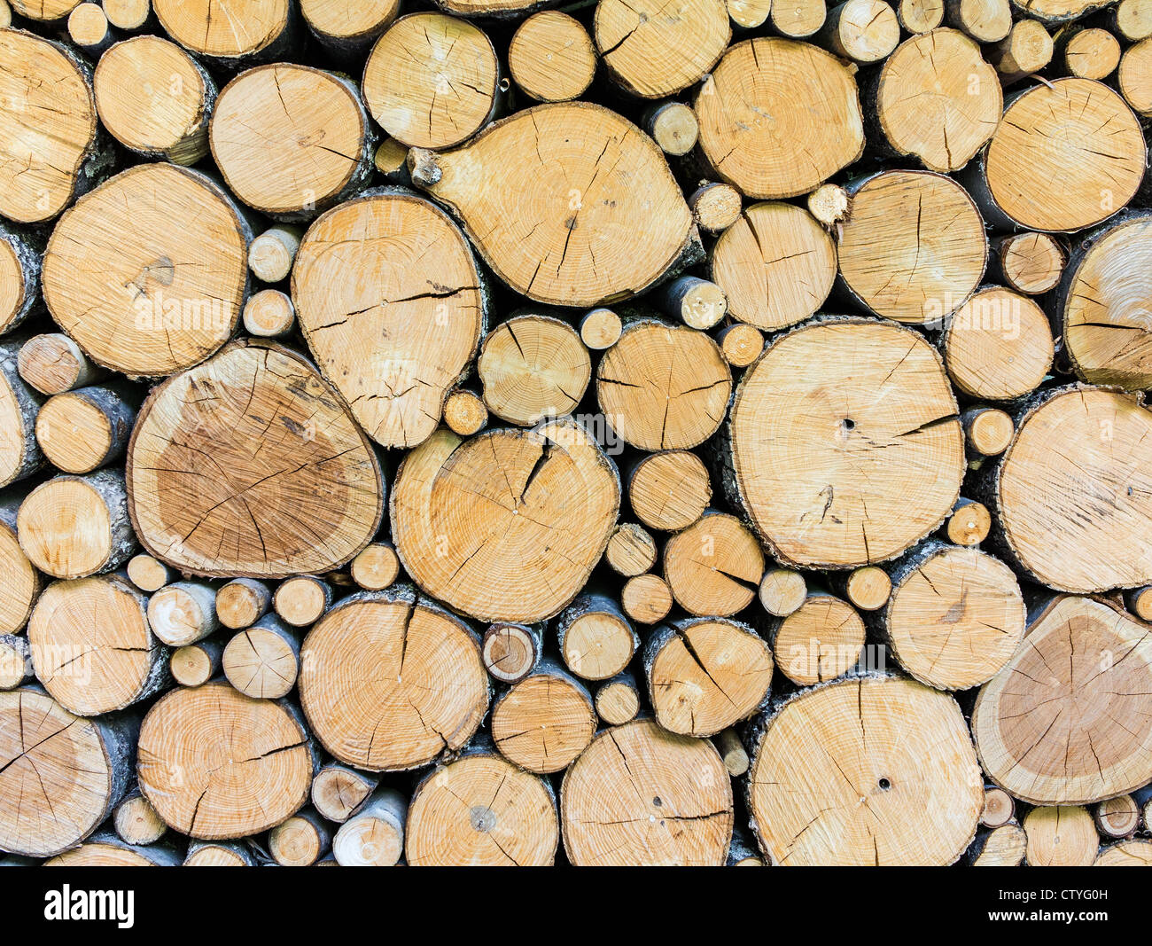 A timber woodpile background - Stock Image