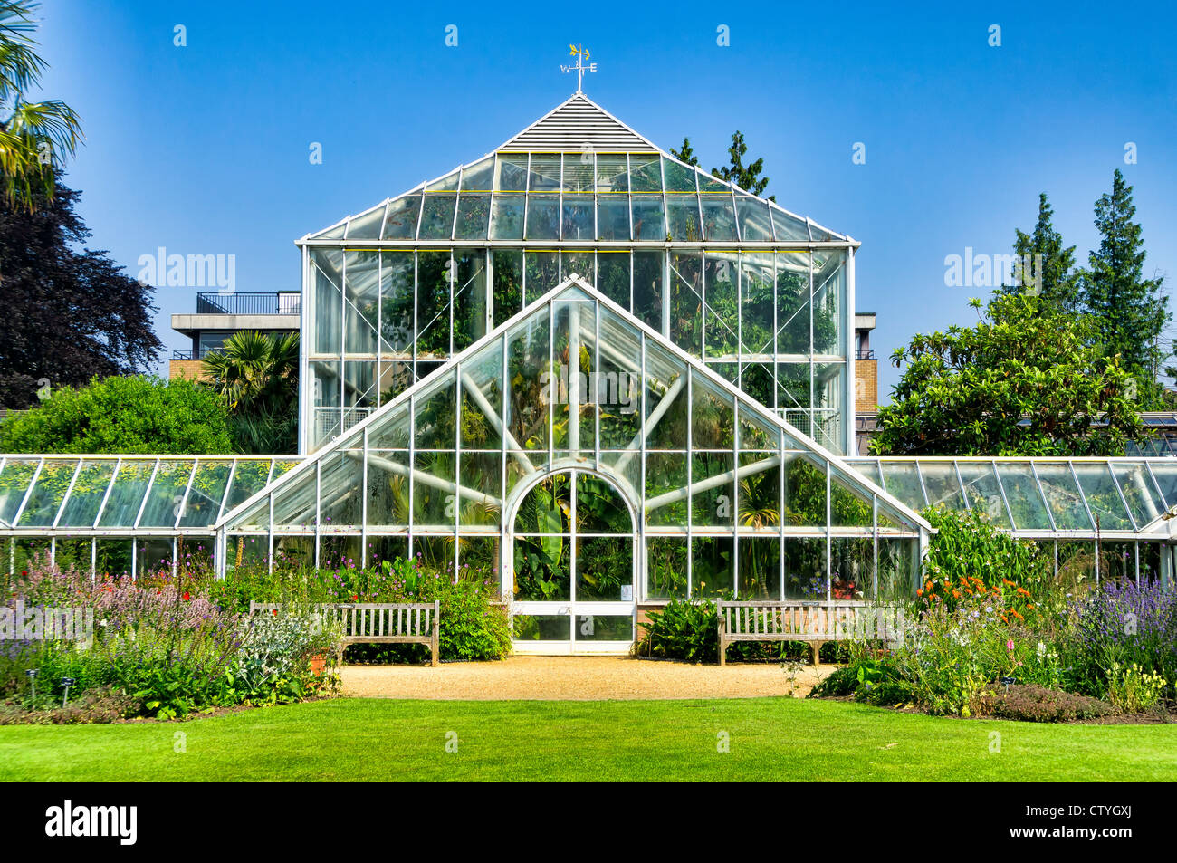 Greenhouse of the botanical garden of the University of Cambridge - Stock Image