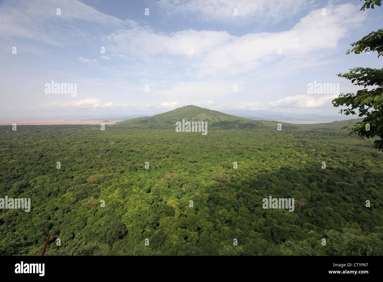 beautiful African landscape - Stock Image