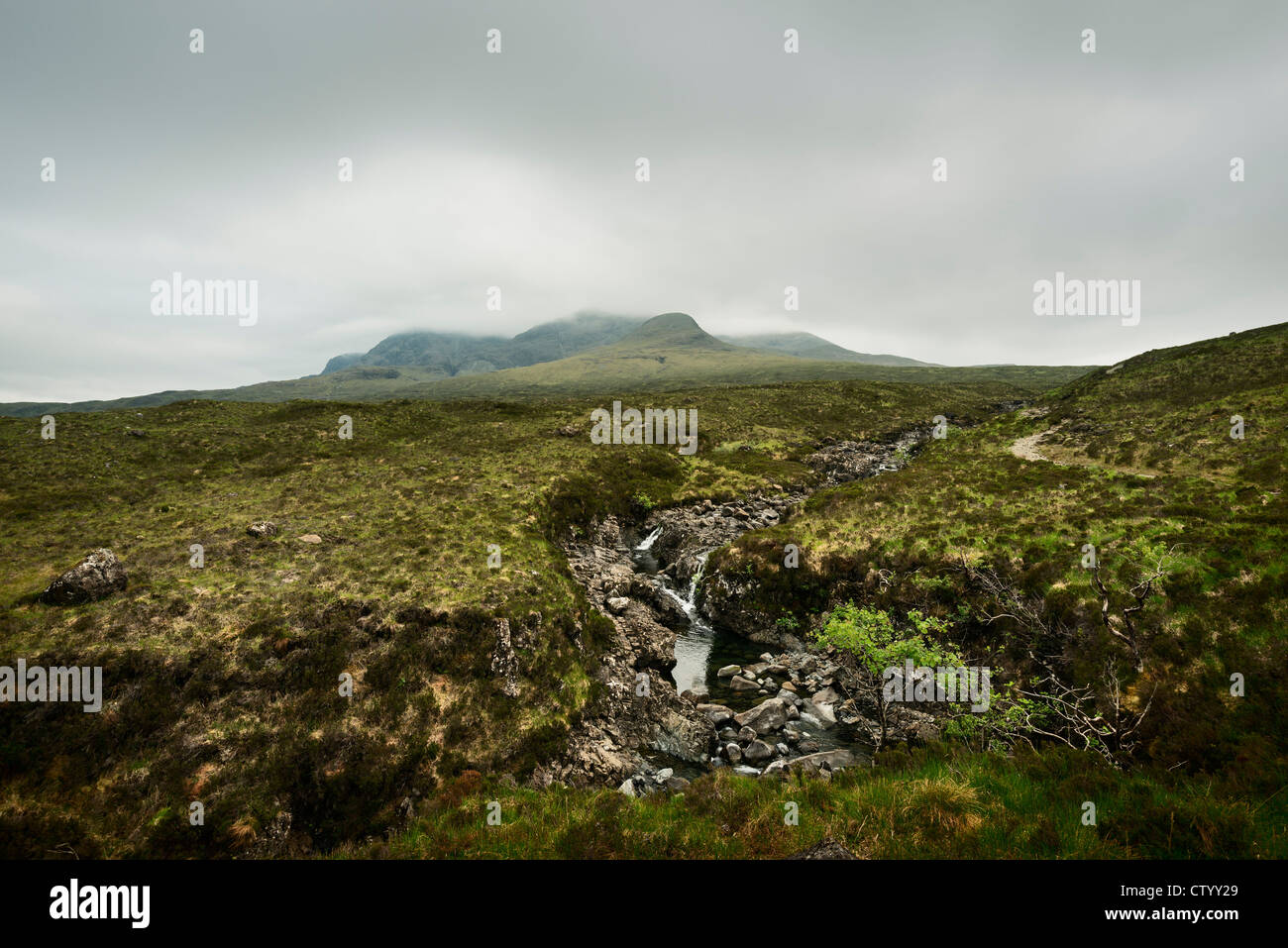 Mossy rocks in rural landscape - Stock Image