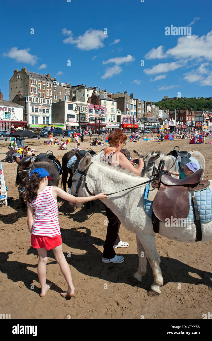Scarborough South Bay with donkeys and holidaymakers - Stock Image