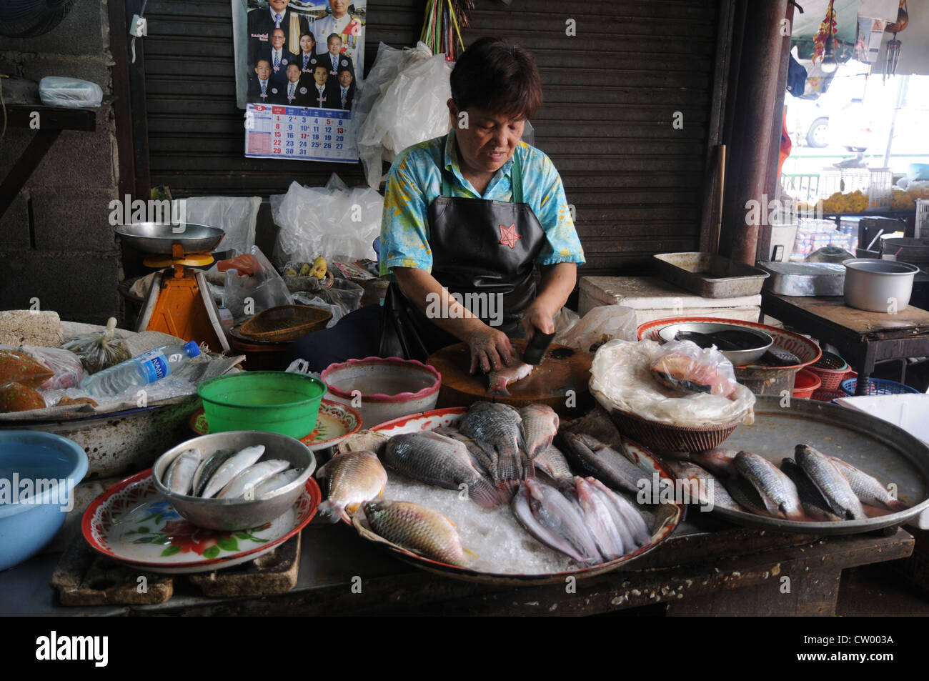 Woman cleaning fish editorial stock photo. Image of birds