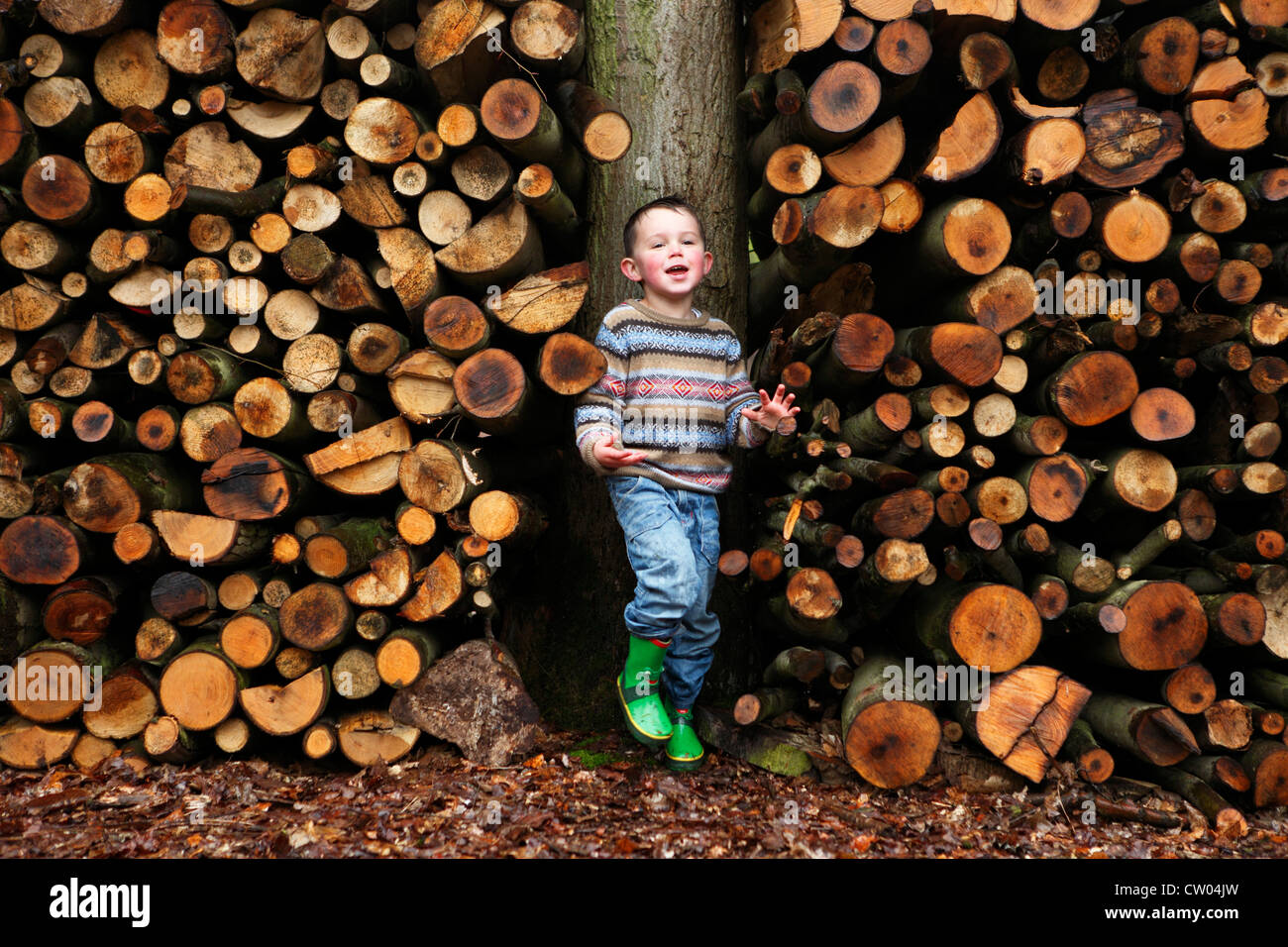 Boy standing by logs of wood - Stock Image