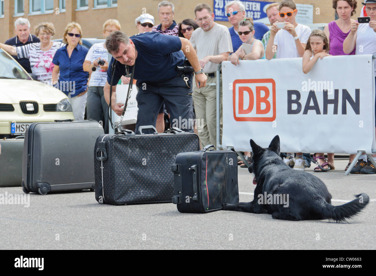 Drug sniffer dog from a German police K-9 drug unit searching suitcases for illegal drugs watched by spectators, - Stock Image