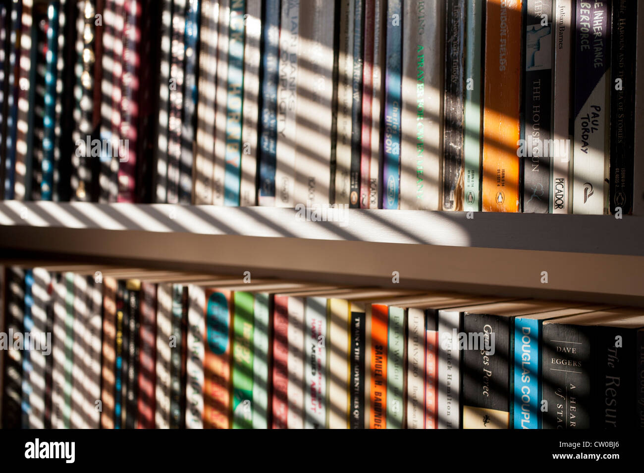 Terrific Paperback Books On Bookshelves With Venetian Blind Shadows Download Free Architecture Designs Embacsunscenecom