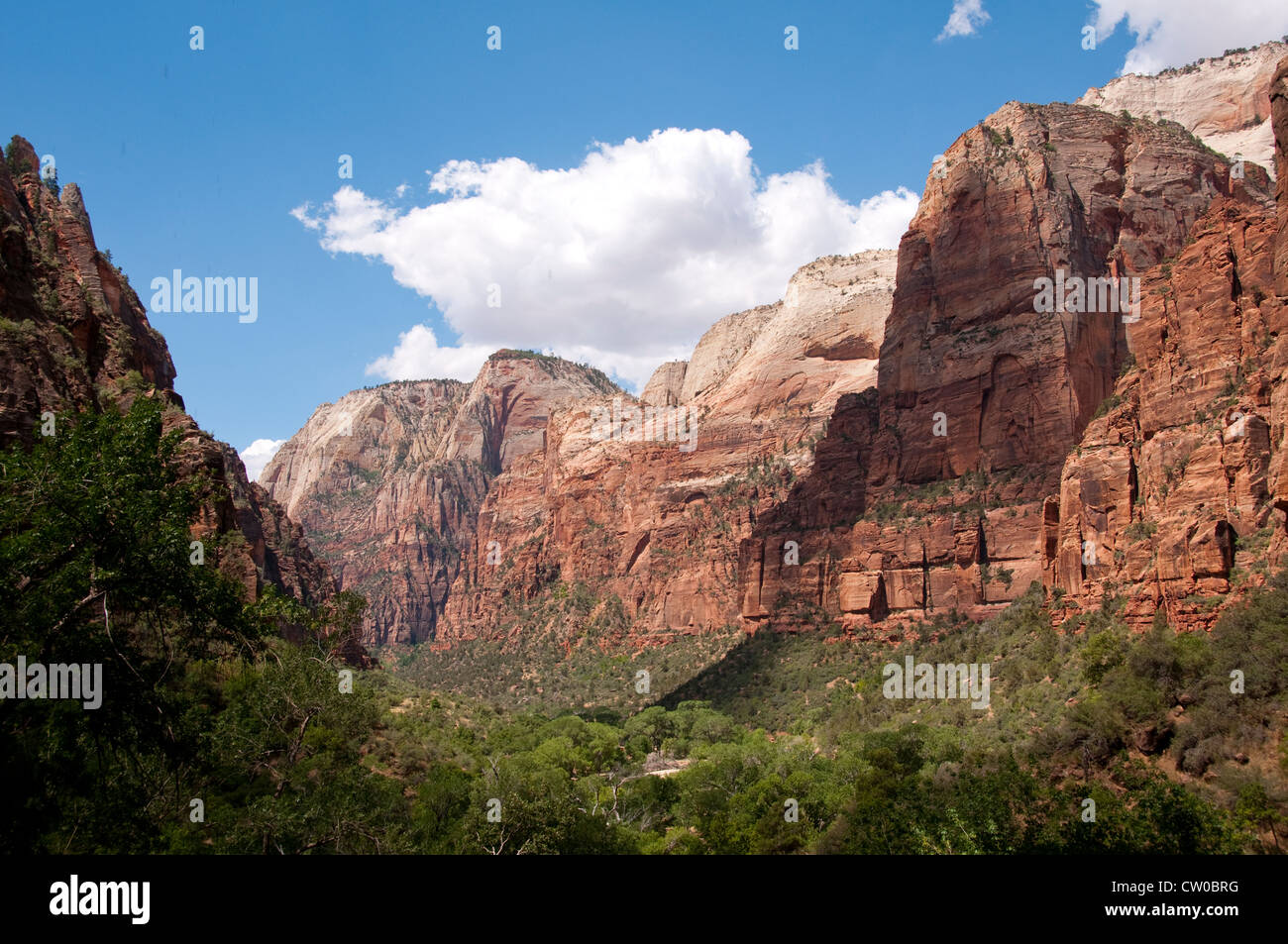 USA Utah, Zion National Park. view from Weeping Rock land form Stock ...