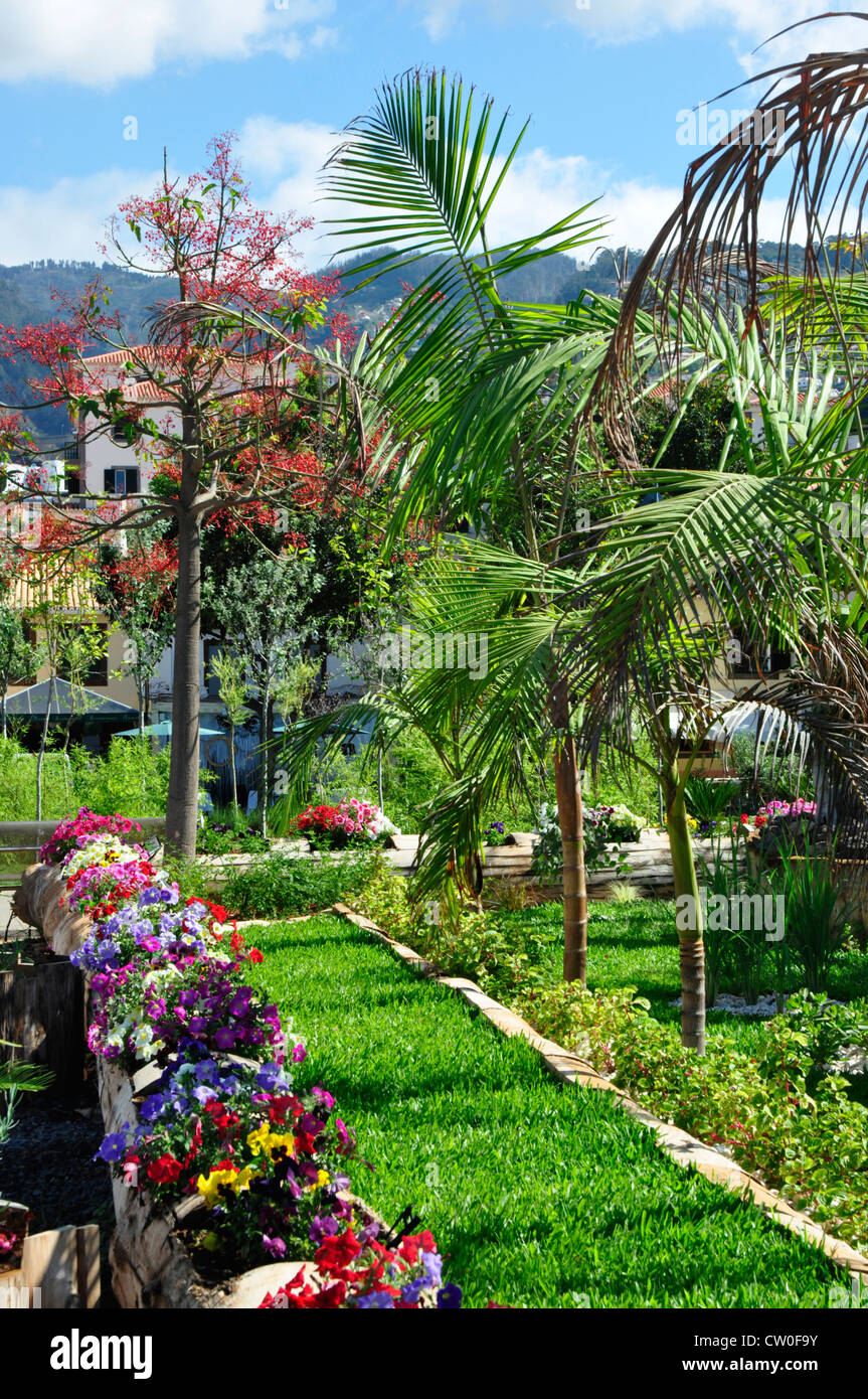 Portugal - Madeira island - Funchal seaside promanade - Old Town area - gardens designed and planted by local scout - Stock Image
