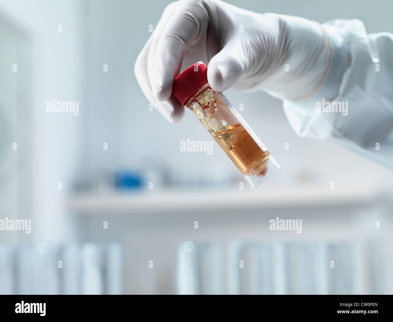 Scientist examining test tube in lab Stock Photo