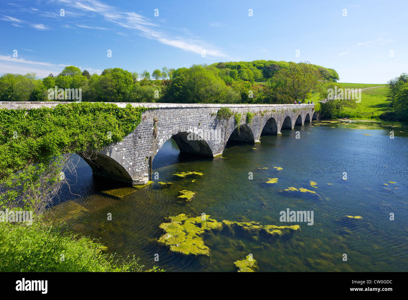 Eight-Arch Bridge, Bosherton Lily Ponds, Pembrokeshire National Park, West Wales, Cymru, UK, United Kingdom, GB, - Stock Image