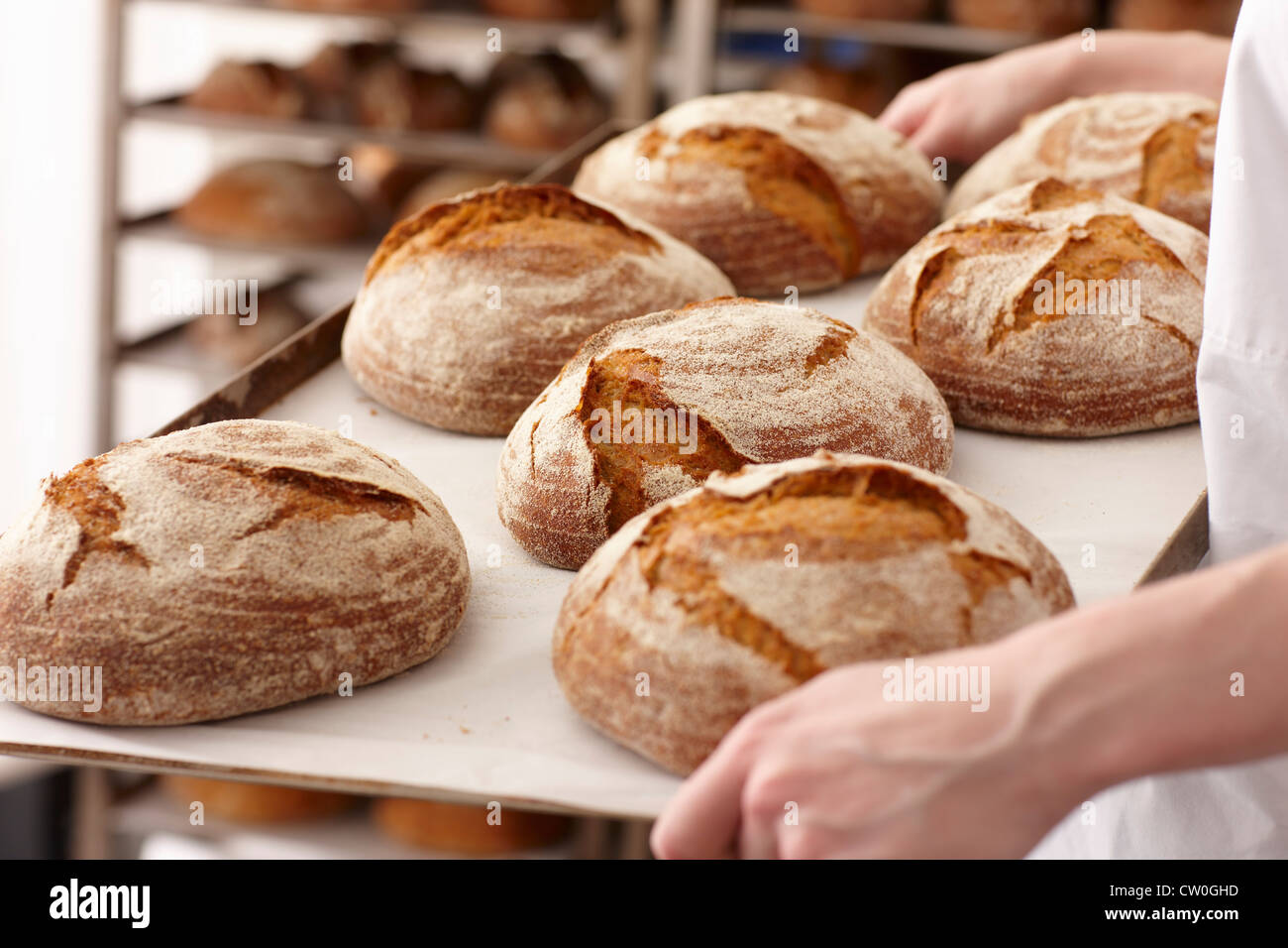 Chef carrying tray of bread in kitchen Stock Photo