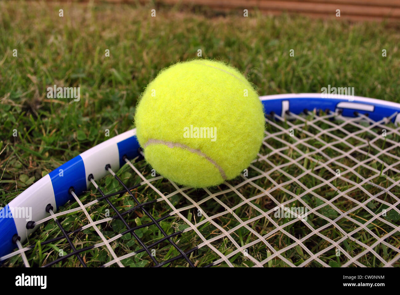 how to play tennis on grass courts