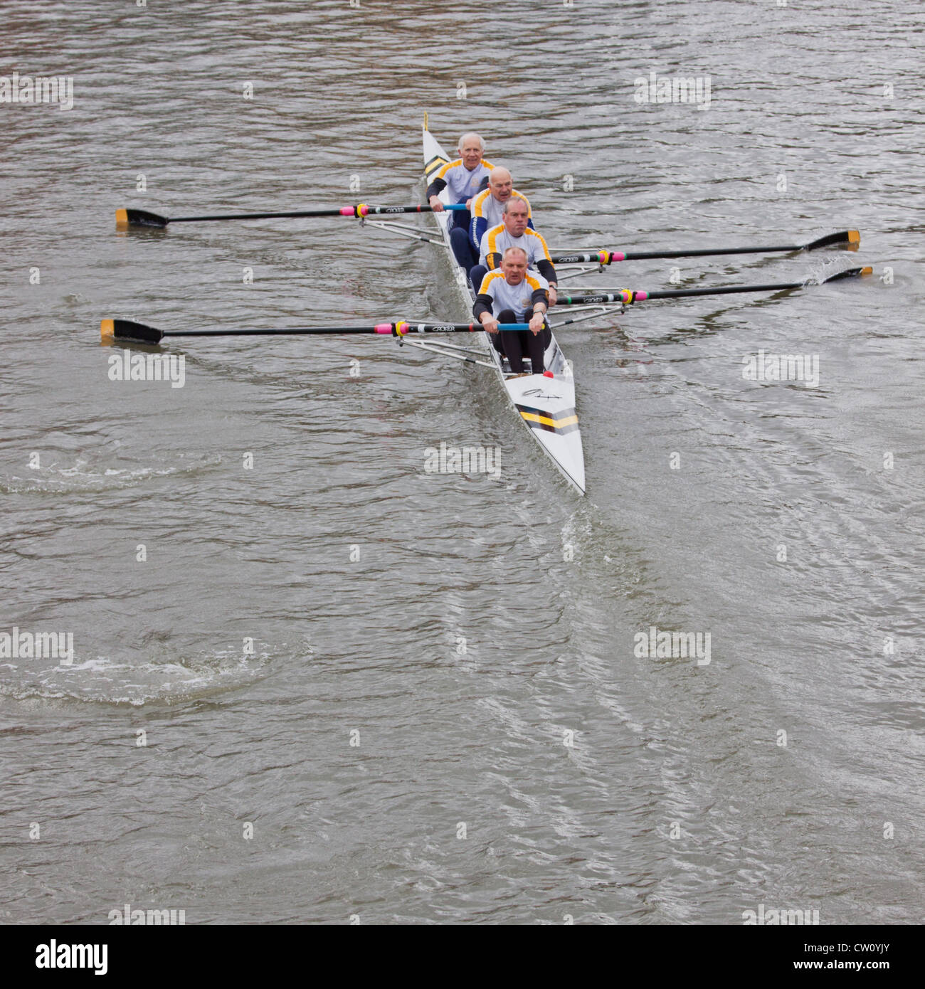 Veteran four crew taking part in the annual Head of the River race through Bristol docks - Stock Image