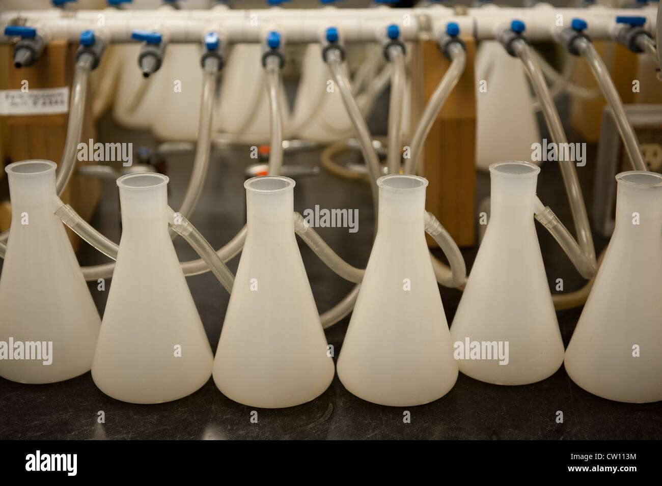 Beakers hooked up to tubes in a laboratory - Stock Image