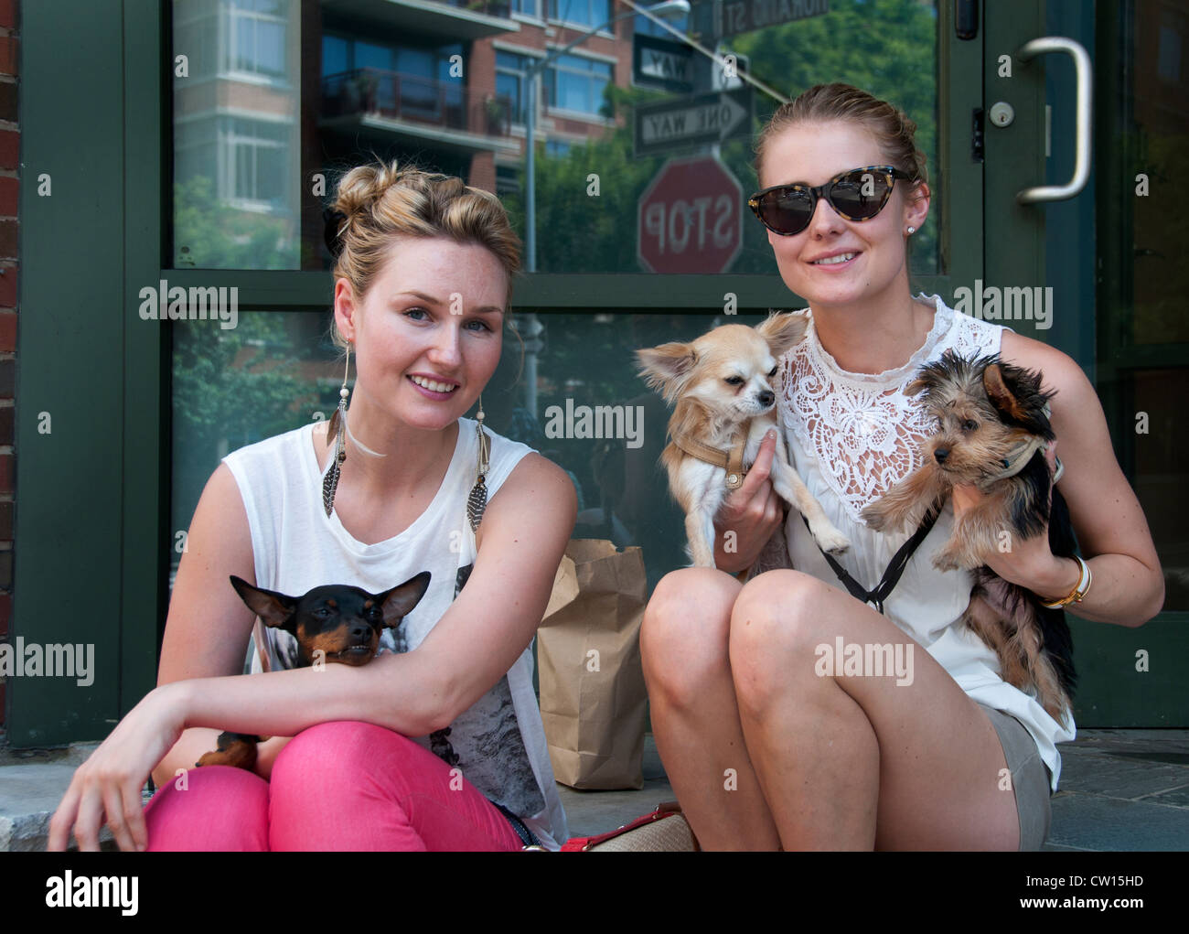 Young Girls Women small dogs West Village Manhattan New York City United States of America - Stock Image