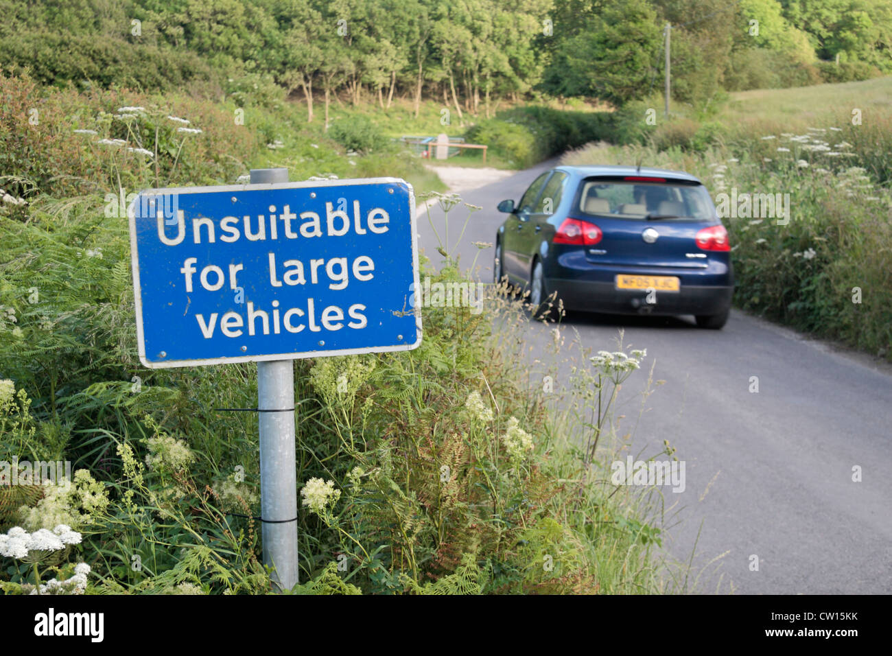 Car passing an 'Unsuitable for large vehicles' road sign on a small country road near Corfe Castle, Dorset, - Stock Image